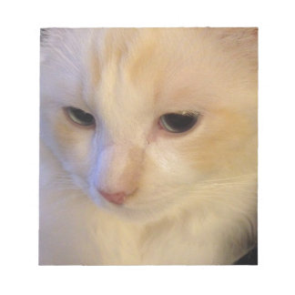 Close Up Red Point Ragdoll Cat Notepad