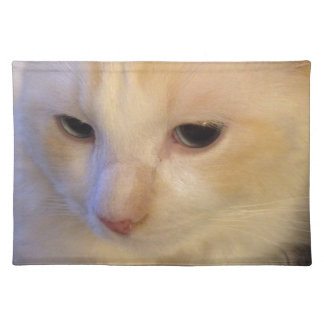 Close Up Red Point Ragdoll Cat Placemat