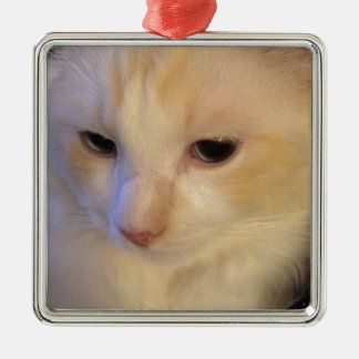 Close Up Red Point Ragdoll Cat Silver-Colored Square Ornament