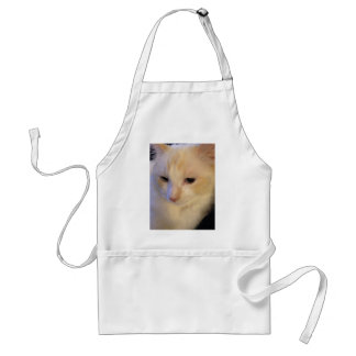 Close Up Red Point Ragdoll Cat Standard Apron
