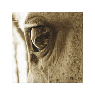 Close-up Sepia Image of a Dappled Gray Horse's Eye Canvas Print