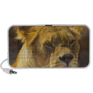 Close_Up_Tiger.jpg Travel Speaker