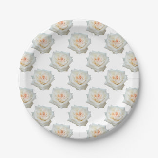 Close Up View Of A Beautiful White Rose Isolated 7 Inch Paper Plate