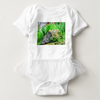 Close-up view of a decorative lawn in a park baby bodysuit