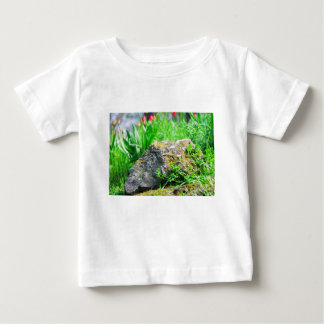 Close-up view of a decorative lawn in a park baby T-Shirt