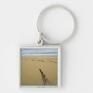 Close-up view of bird feather in beach sand, Silver-Colored square keychain