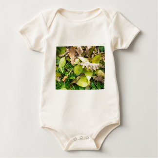 Close-up view on fallen autumn leaves baby bodysuit