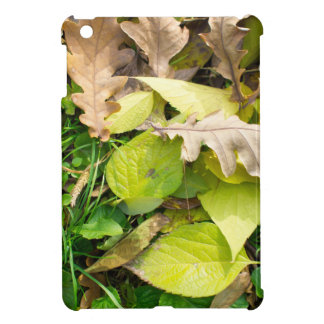 Close-up view on fallen autumn leaves iPad mini cover