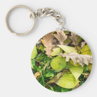 Close-up view on fallen autumn leaves keychain