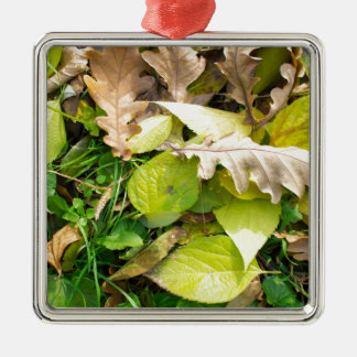 Close-up view on fallen autumn leaves Silver-Colored square ornament