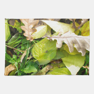 Close-up view on fallen autumn leaves towels