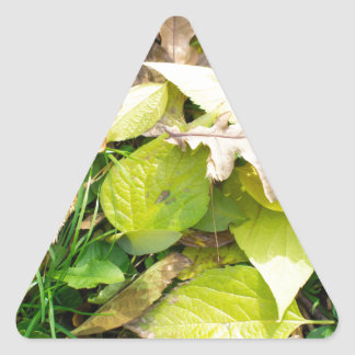 Close-up view on fallen autumn leaves triangle sticker