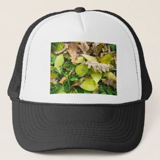 Close-up view on fallen autumn leaves trucker hat