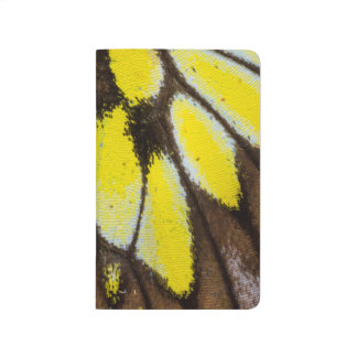 Close-up Wing Pattern of Tropical Butterfly Journal