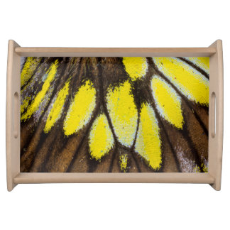 Close-up Wing Pattern of Tropical Butterfly Serving Tray