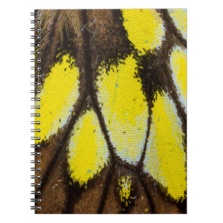 Close-up Wing Pattern of Tropical Butterfly Spiral Notebook