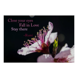 Close Your Eyes, Fall in Love Rumi Poster