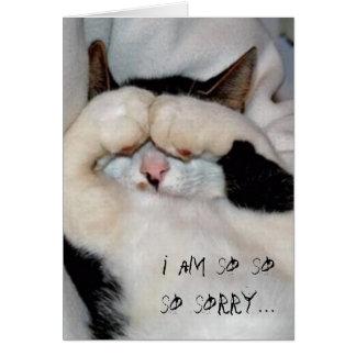 closed eye kitty, i am so so so sorry... card