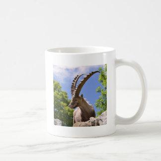 Closeup Alpine ibex Coffee Mug