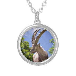 Closeup Alpine ibex Silver Plated Necklace