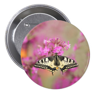 Closeup dovetail butterfly on lilac flower 3 inch round button