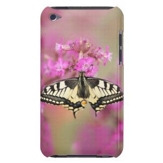 Closeup dovetail butterfly on lilac flower barely there iPod cases