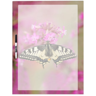 Closeup dovetail butterfly on lilac flower dry erase board