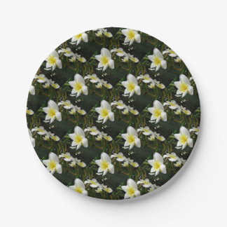 Closeup Frangipani with Natural Garden Background Paper Plate