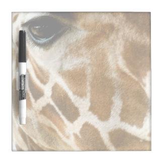 Closeup Giraffe Face Wild Animals Nature Photo Dry Erase Board
