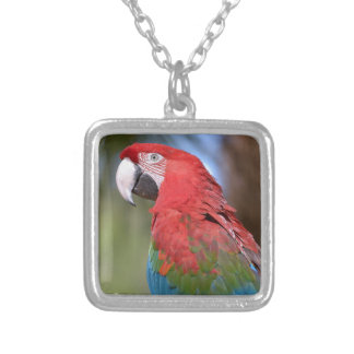 Closeup green-winged macaw silver plated necklace