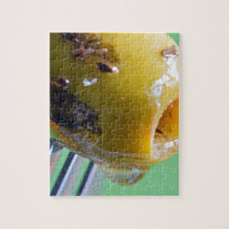 Closeup grilled olive on the fork jigsaw puzzle