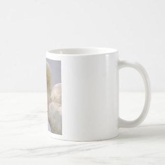 Closeup mute swan coffee mug