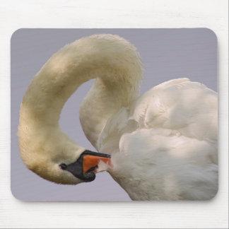 Closeup mute swan mouse pad