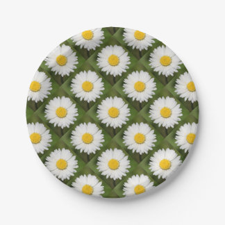 Closeup Of A Beautiful Yellow And Wild White Daisy Paper Plate