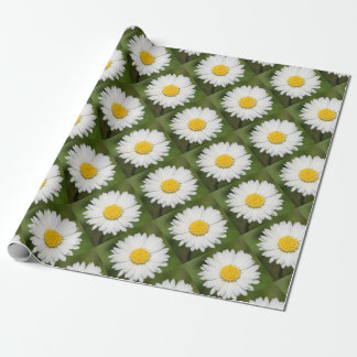 Closeup Of A Beautiful Yellow And Wild White Daisy Wrapping Paper