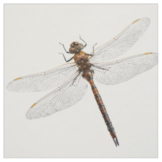 Closeup of a Canada Darner Dragonfly Fabric