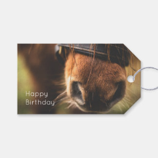 Closeup of a Cute Brown Horse Nose Birthday Pack Of Gift Tags