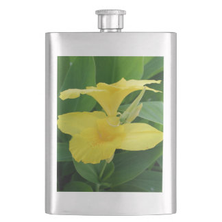 Closeup Of A Tropical Yellow Canna Lily Hip Flask