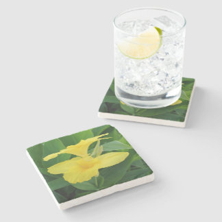 Closeup Of A Tropical Yellow Canna Lily Stone Coaster