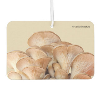 Closeup of An Oyster Mushroom Colony Air Freshener