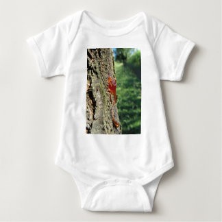 Closeup of pear tree excretion of gummy resin baby bodysuit