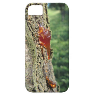 Closeup of pear tree excretion of gummy resin iPhone 5 case