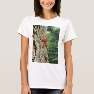 Closeup of pear tree excretion of gummy resin T-Shirt