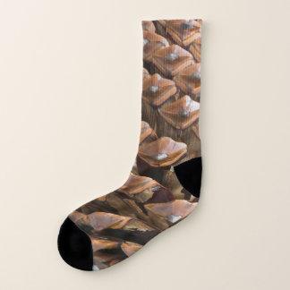 Closeup of pine cone socks