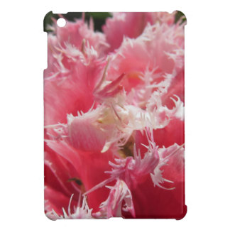 Closeup of pink streaked tulips in spring iPad mini cover