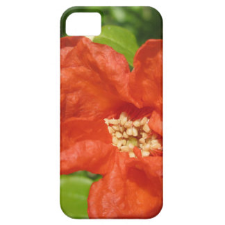 Closeup of red pomegranate flower case for the iPhone 5