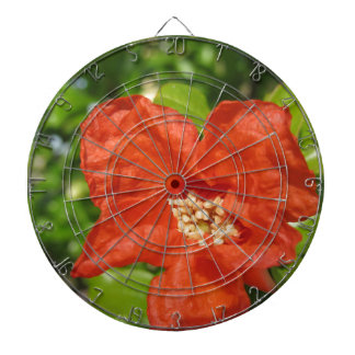 Closeup of red pomegranate flower dartboard