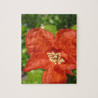 Closeup of red pomegranate flower jigsaw puzzle