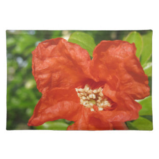 Closeup of red pomegranate flower placemat