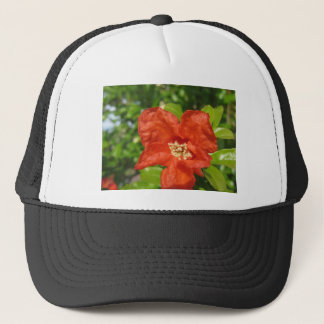 Closeup of red pomegranate flower trucker hat